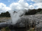 Waiting for geyser at Te Puia