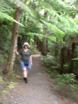 Opua Forest Trail, Paiua