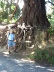 Chaim in the Dunedin Botanic Gardens