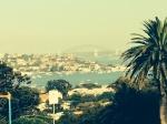 Harbor view (Harbor Bridge in background)