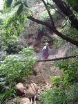 Ruth crossing suspension bridge